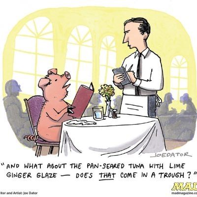 Cartoons by Joe Dator: Pig
